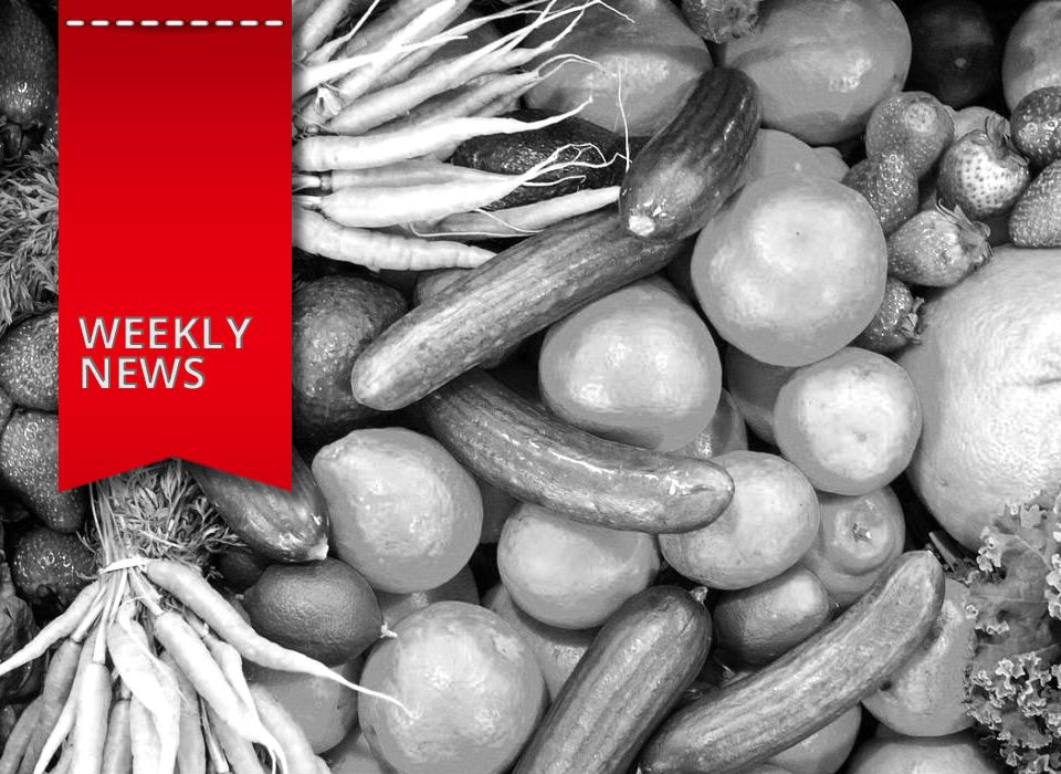 Lidl erweitert seinen E-Commerce um E-Food, Onlinehändler machen Umsatzverlust durch Kundenbetrug und Surfen im Netz wird barrierefrei - das sind Deine Weekly News.